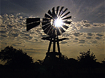 windmill_farm